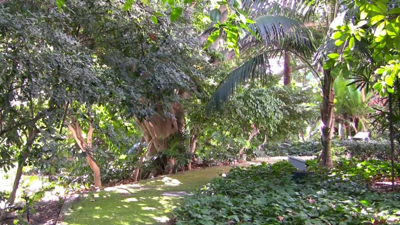 Историко-ботанический сад «Ла-Консепсьон»