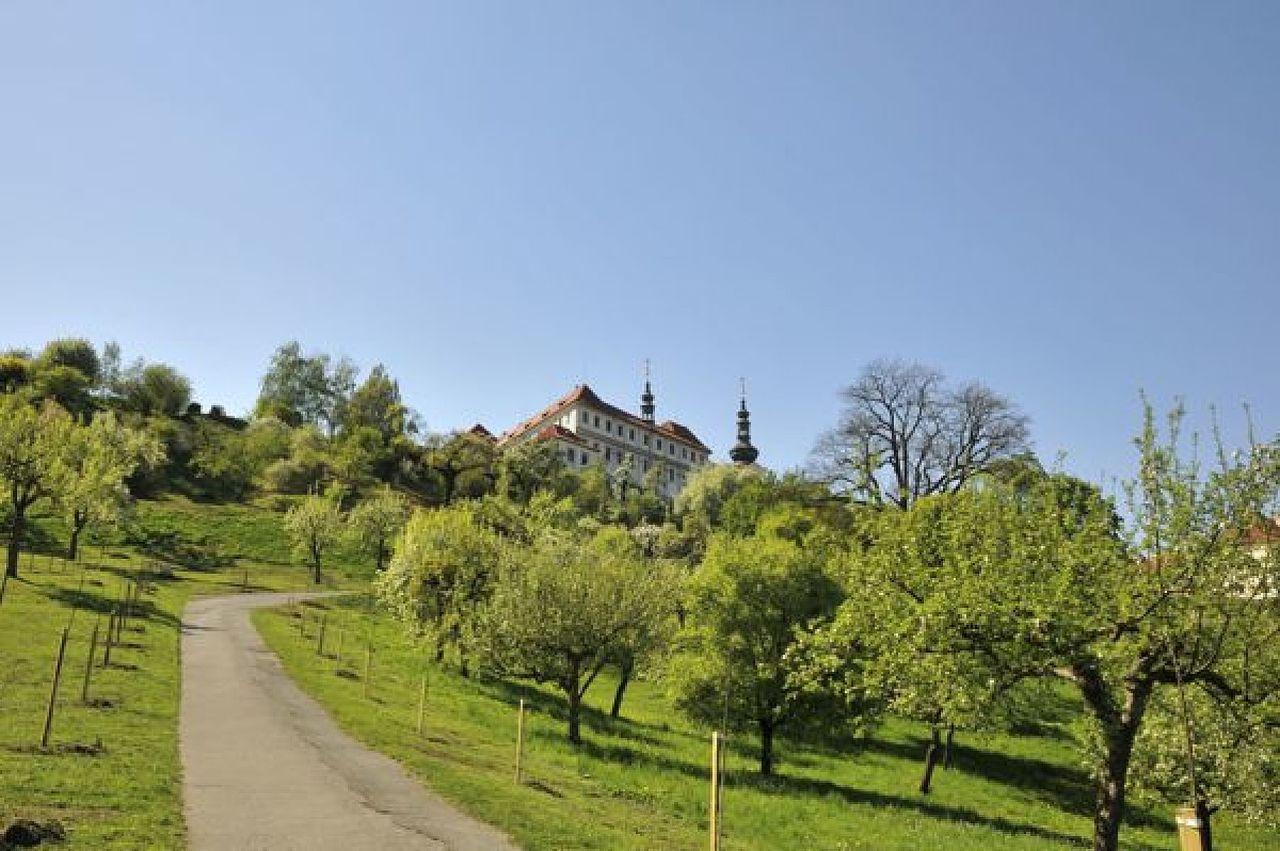 Петрин Холм