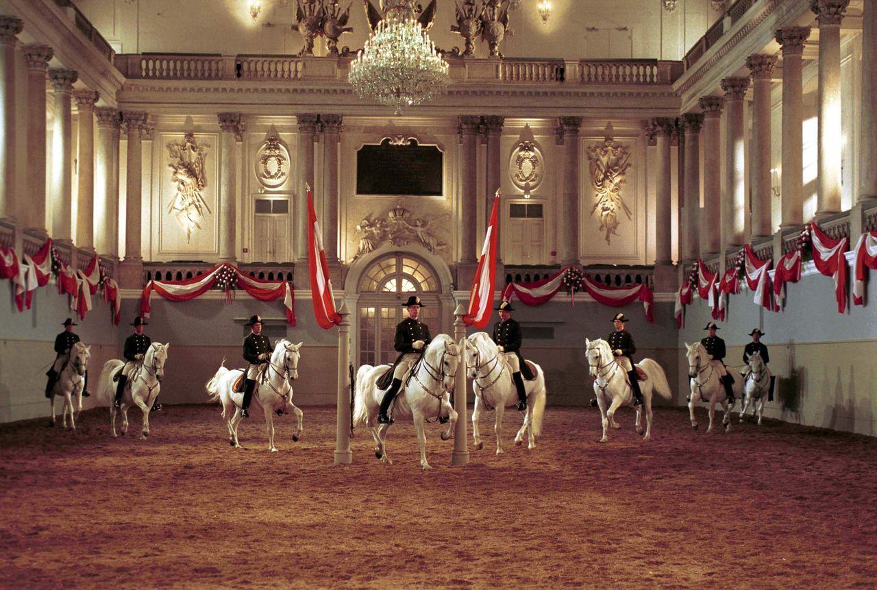 Испанская школа верховой езды, Вена
