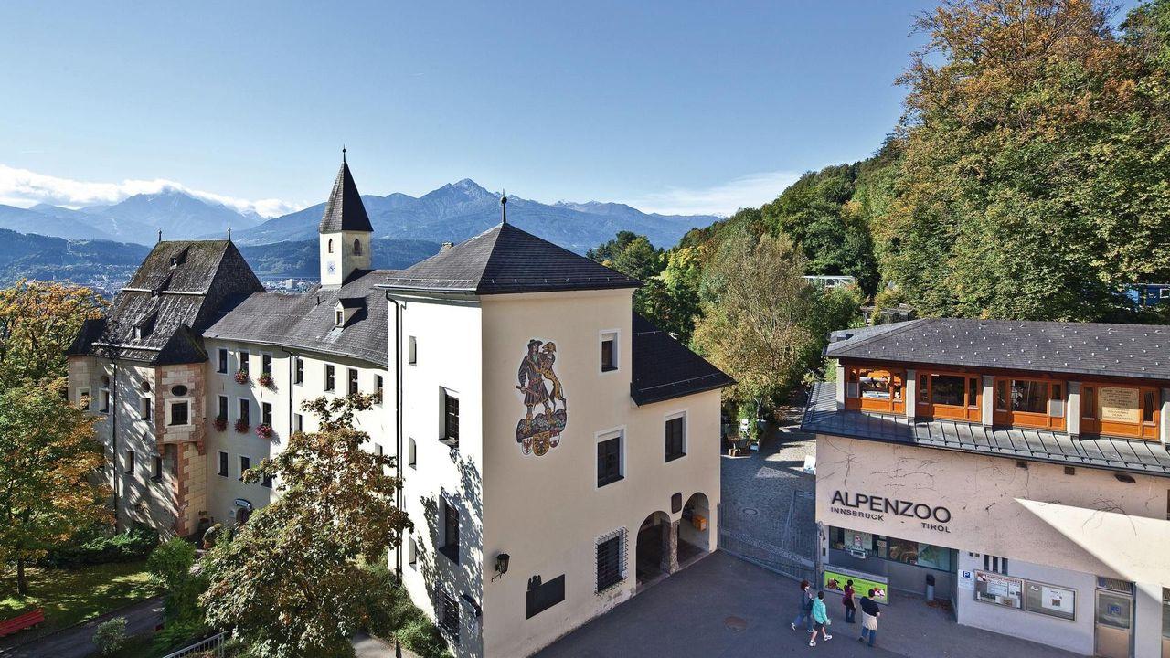 Альпийский зоопарк, Инсбрук