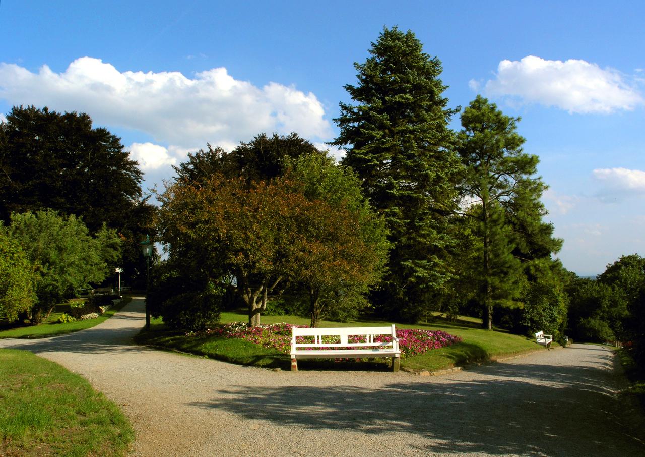 «Лечебный парк» Бадена (Курпарк)