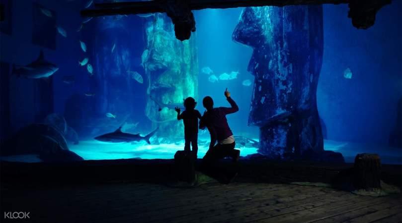 """Лондонский аквариум """"Морская жизнь"""""""